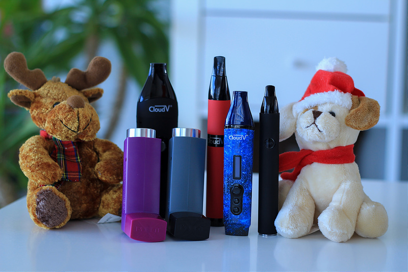 Top 10 Insanely Cool & Discreet Vaporizers to Take to Music Festivals