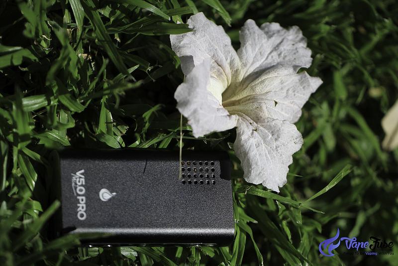 black-flowermate